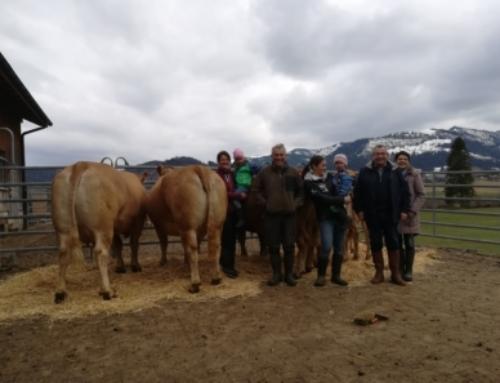 Les impressions du juge Didier Yon sur la Suisse et l'élevage Swiss Limousin